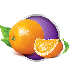 Oranges in a purple circle