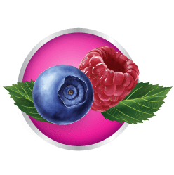 Blueberry and Raspberry in Purple Circle